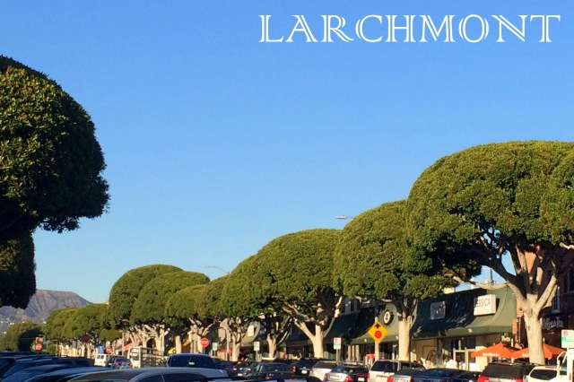 Larchmont Bungalow  ALL THINGS MAJOR BLOG Larchmont Blvd Los Angeles